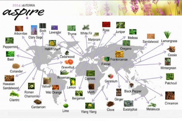 map-doterra-producteurs-huiles-essentielles.jpg